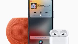 Apple Voice Plan